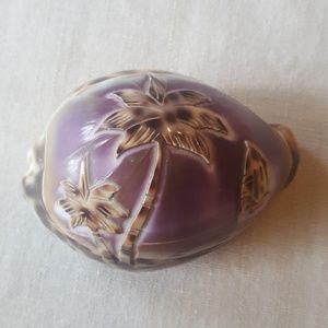 Hawaiian Decorative Shell
